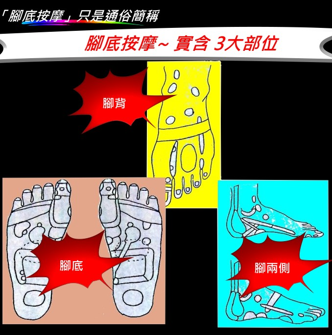 leg-3.jpg